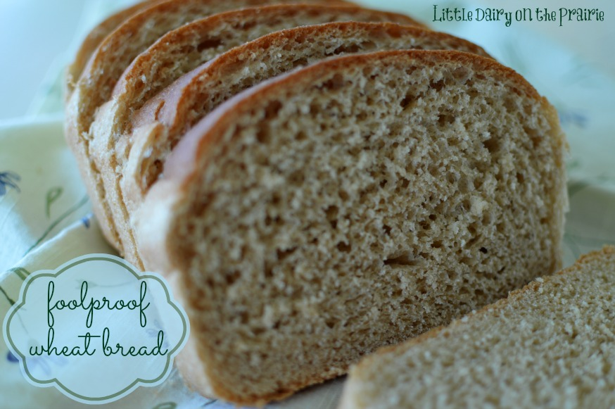 Foolproof Wheat Bread, Quick, No knead, one time rise