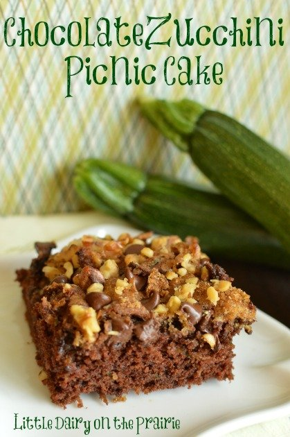 Chocolate Zucchini Picnic Cake with Walnuts