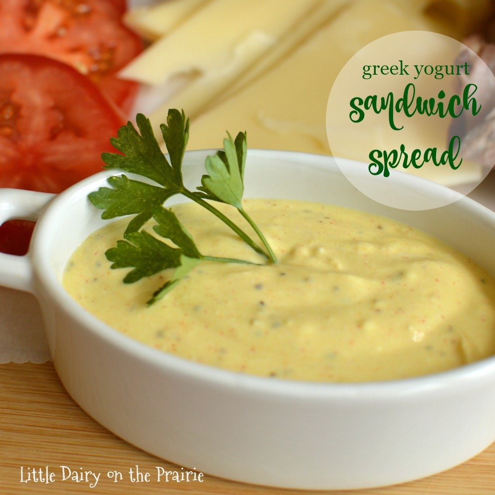 Want to dress up your sandwich and stay skinny too Try my creamy Greek Yogurt Sandwich Spread! Delicious!