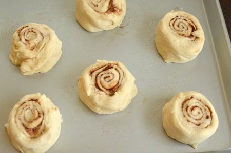 Cinnamon rolls with mashed potatoes