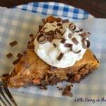 Triple Chip Blondie Pumpkin Pie