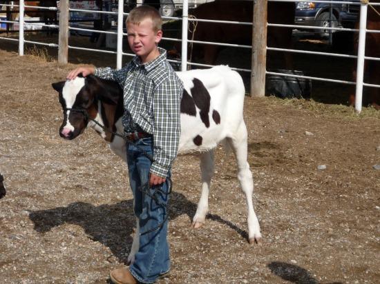 Dairy farmer boy