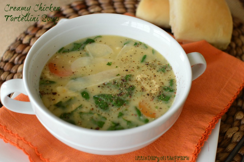 Soup is the ultimate in comfort food! This one is a fun spin on traditional chicken noodle soup!!