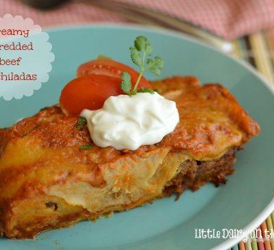 Creamy Shredded Beef Enchiladas