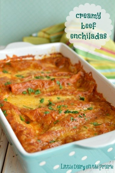 Creamy and spicy sauce smothers shredded beef enchiladas. Even better the next day!  Little Dairy on the Prairie