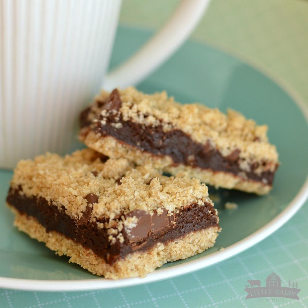 Fudgy Oatmeal Brownie Bars!