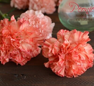 I love this simple little trick! These are the most gorgeous carnations ever! (Usually I don't like carnations, at all)  Little Dairy on the Prairie