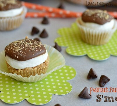Peanut Butter Cup S'mores! Oh my goodness!  Little Dairy on the Prairie
