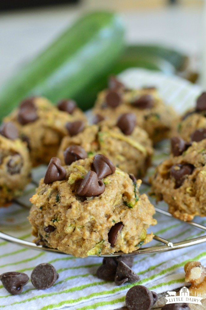 close up shot of chocolate chip zucchini cookies with zucchini in the background