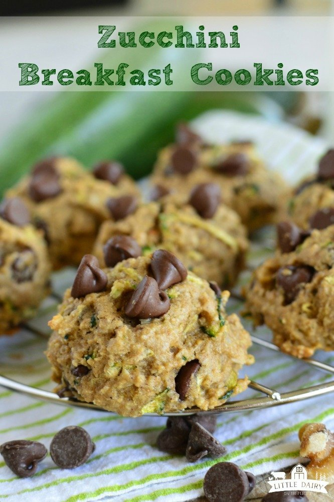 Zucchini Breakfast Cookies are super soft, not overly sweet, and just right for on the go breakfasts! They freeze well too! www.littledairyontheprairie.com #cookies #zucchini #chocolate #breakfast #breakfastcookies #freezercookies #makeaheadbreakfast #makeaheadmeals #freezermeals #omthegobreakfast #walnuts #baking #shreddedzucchini #desserts #easyrecipe #yummy