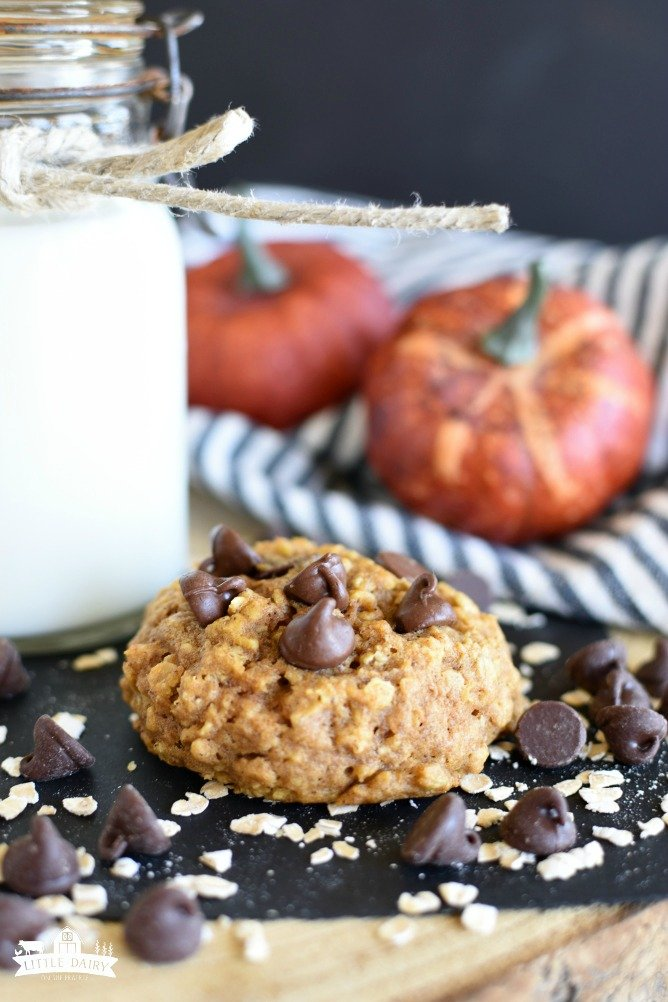 Pumpkln Oatmeal Chocolate Chip Cookies are super soft cookies made with pumpkin puree, oatmeal, flour, chocolate chips, and all the traditional pumpkin spices! www.littledairyontheprairie.com #cookies #chocolate #pumpkin #oatmealcookies #chocolatechipcookies #dessert #baking #treats #snacks #recipe