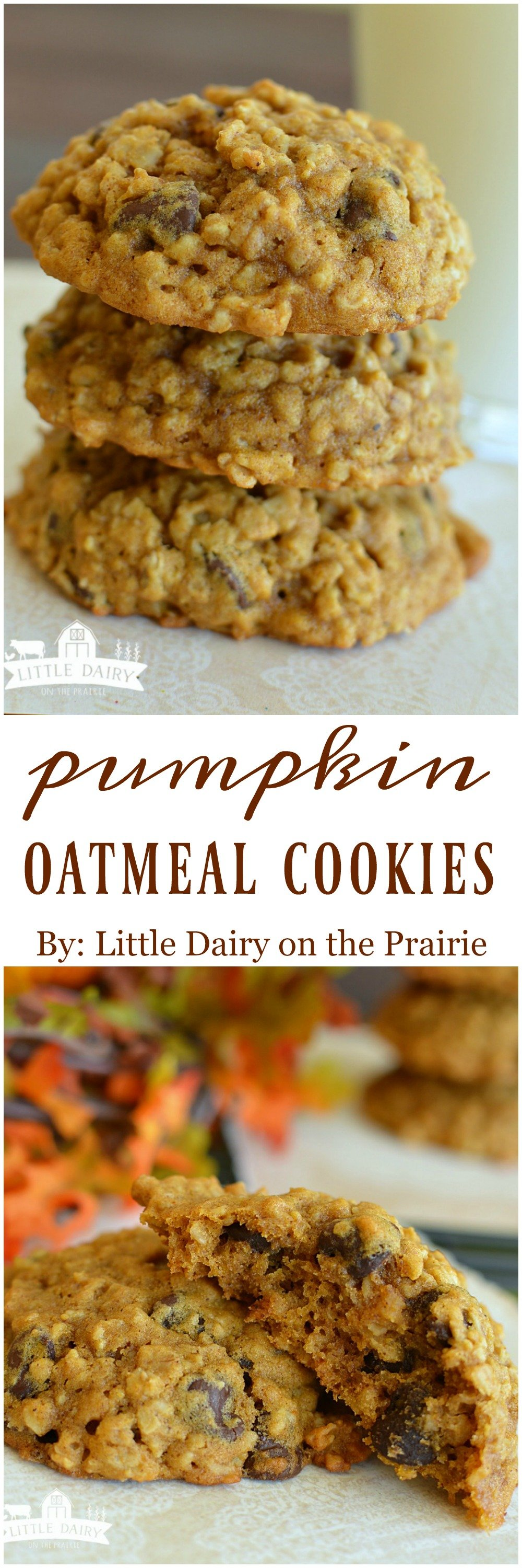 Pumpkin Oatmeal Chocolate Chip Cookies - Little Dairy On the Prairie