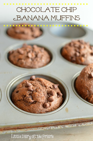 Chocolate Chip Banana Muffins! Tastes really similar to Costco Muffins!  Little Dairy on the Prairie