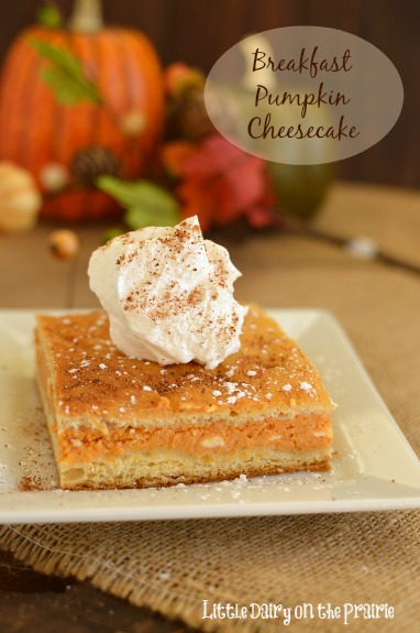 Cheesecake collided with pumpkin pie and a beautiful thing happened! Pumpkin Breakfast Cheesecake! Little Dairy on the Prairie