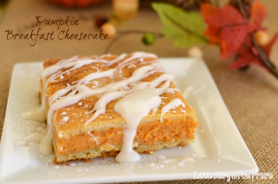 Pumpkin Breakfast Cheesecake
