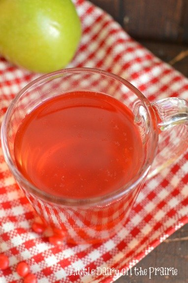 Two ingredient Slow Cooker Apple Cider! Your house is going to smell amazing!  Little Dairy on the Prairie