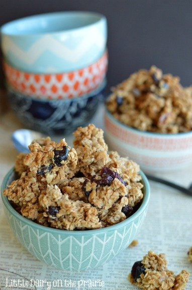 Cranberry Almond Granola!!  Little Dairy on the Prairie