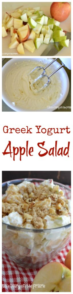 Crisp apples, crunchy steusel topping and creamy Greek Yogurt dressing make a crazy good Apple Salad! Little Dairy on the Prairie