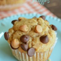 a peanut butter muffin with chocolate chips and peanut butter chips on top