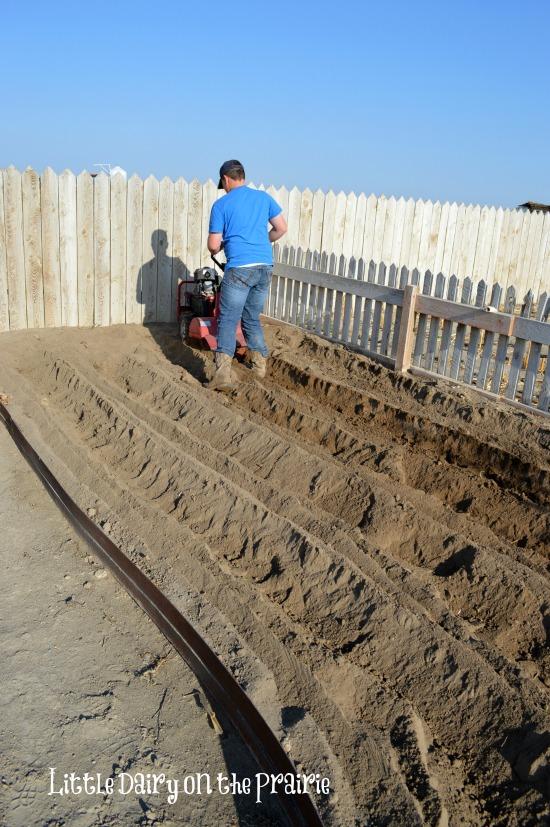Carson Planting Potatoes