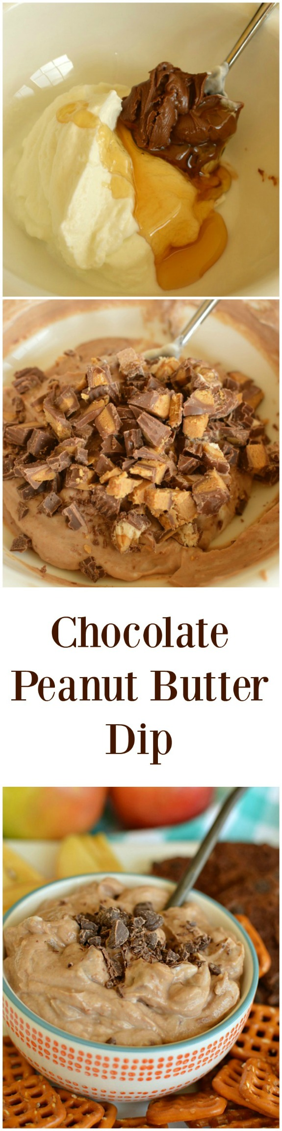 Chocolate Peanut Butter Dip! Dippers optional!