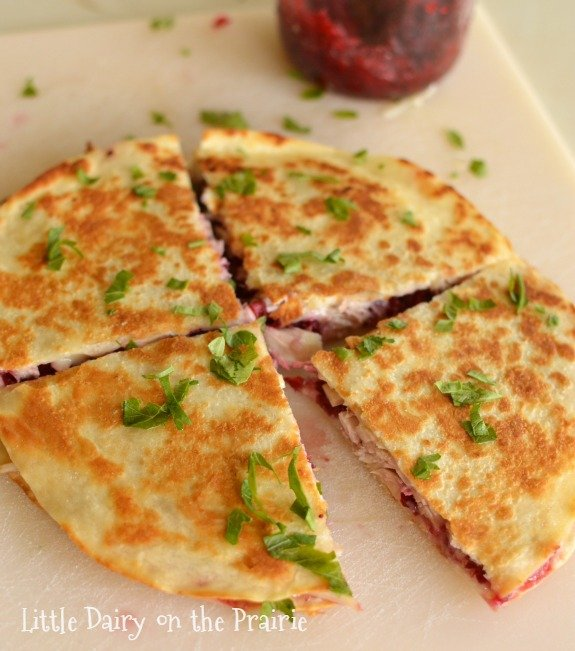 Crispy, gooey, hearty, and sweet cranberry and turkey quesadilla!
