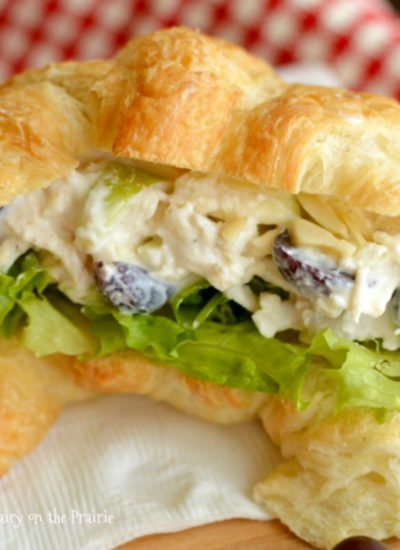 healthy-greek-yogurt-chicken-salad-sandwich