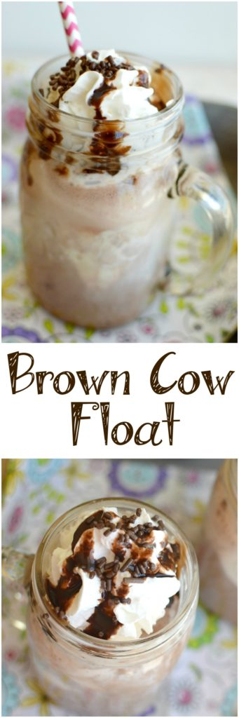 brown-cow-float-12