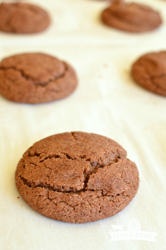 chocolate-snickerdoodles-2