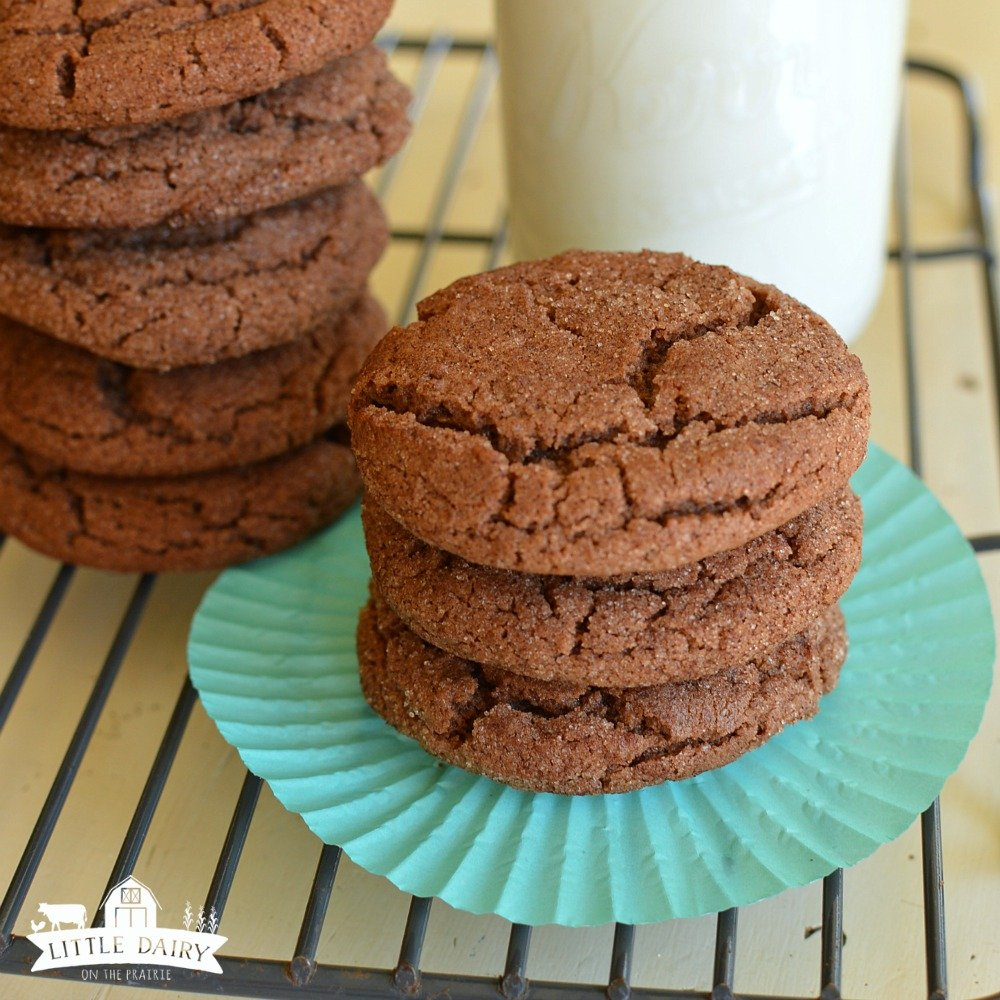 chocolate-snickerdoodles-3