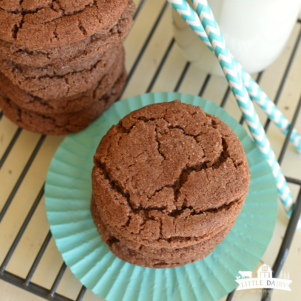chocolate-snickerdoodles