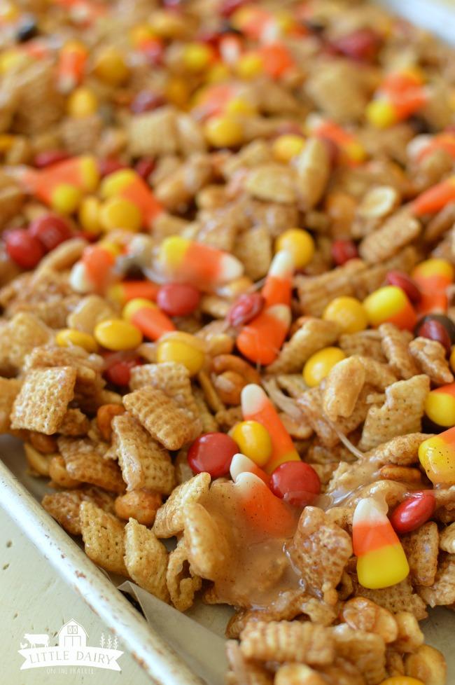 pumpkin-spice-caramel-chex-mix-6