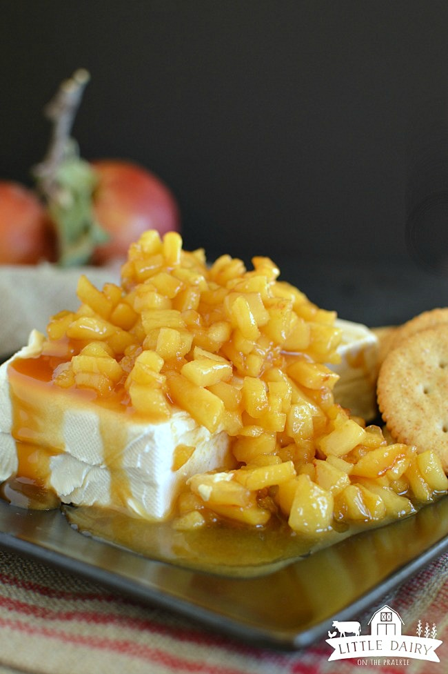 caramel-apple-cream-cheese-appetizer-6