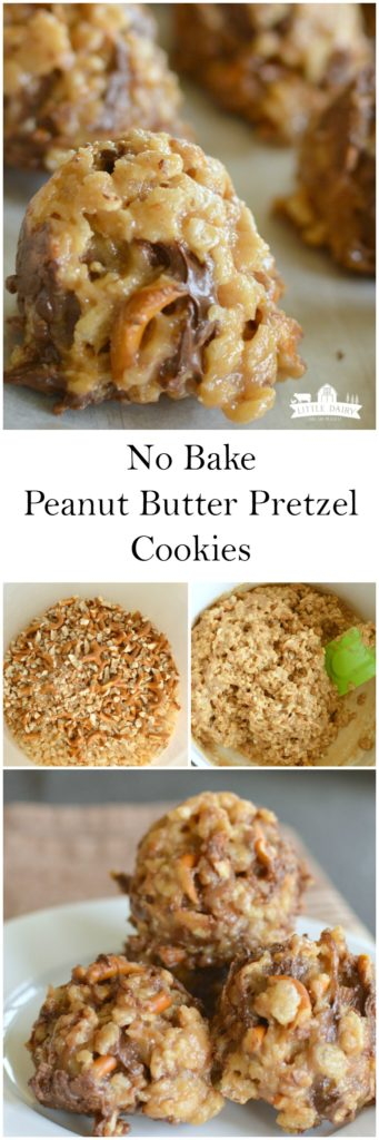 no-bake-peanut-butter-pretzel-cookies-11
