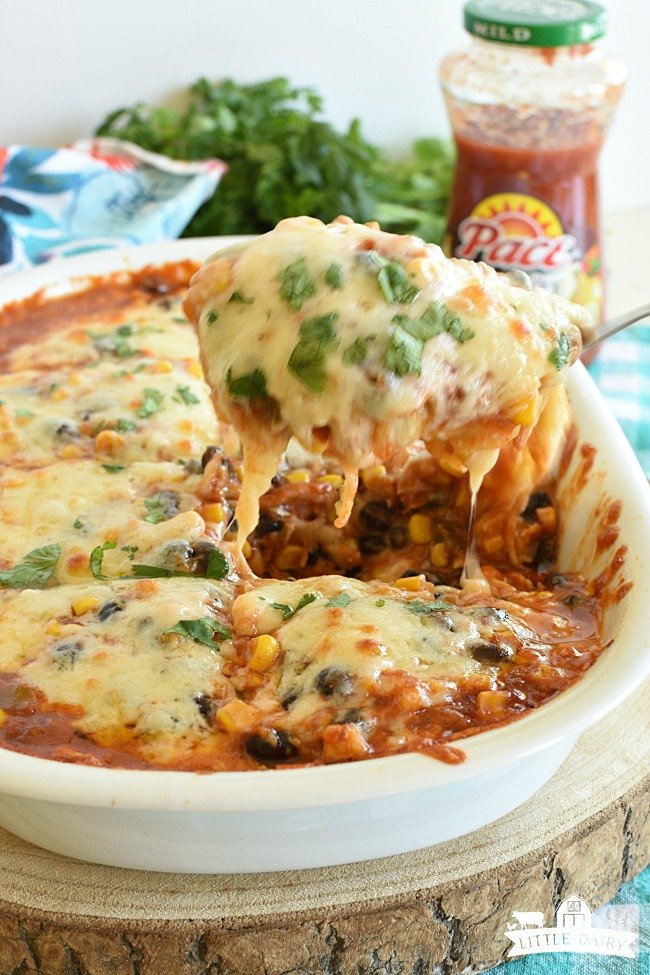 Easy Chicken Enchilada Casserole - Favorite Family Meal