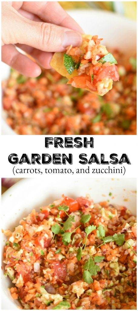 Fresh Garden Salsa is the what they served us in Mexico when we went on our rock climbing adventure! It is now one of my favorite salsas!