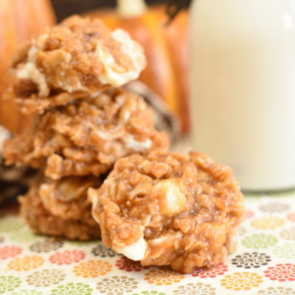 Pumpkin Spice No Baker Cookies- featured image_01