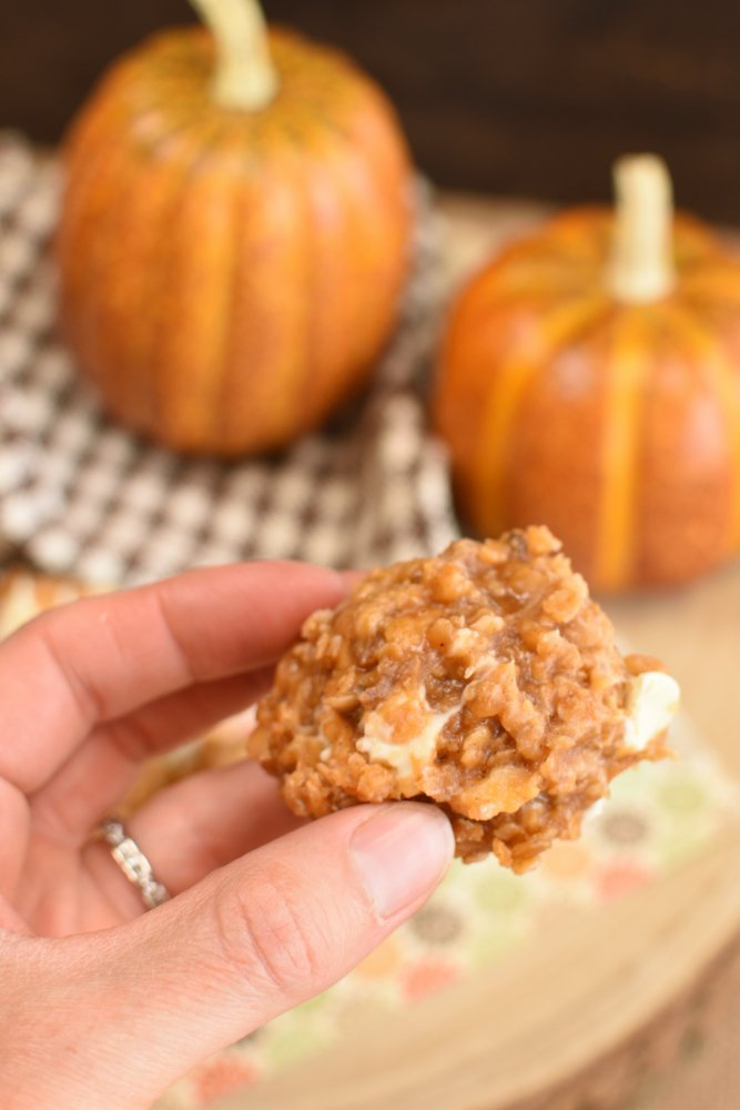 Pumpkin Spice No Bake Cookies- quick and easy recipe