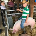 Small Town County Fair