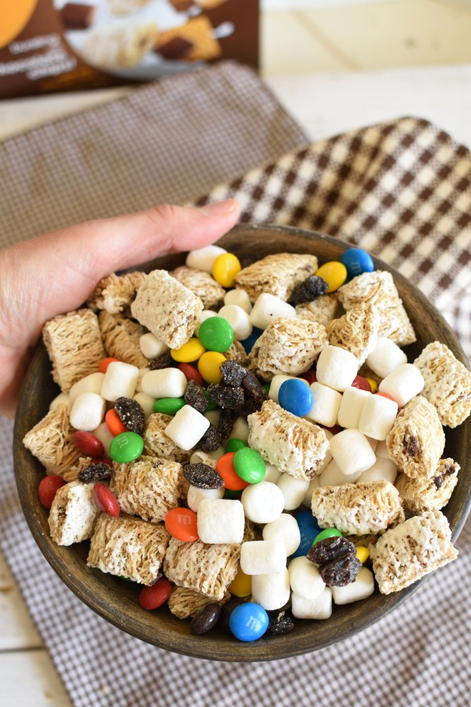 S'mores Trail Mix - Yummy on the go snack