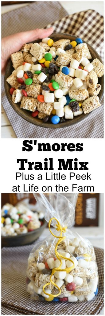 S'mores Trail Mix is a great on the go breakfast or snack that will fuel you for your busy day! #ad #Borntofuel @Walmart