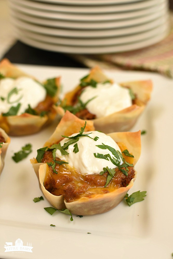 Wonton Burrito Cups - a new way to do Taco Tuesday