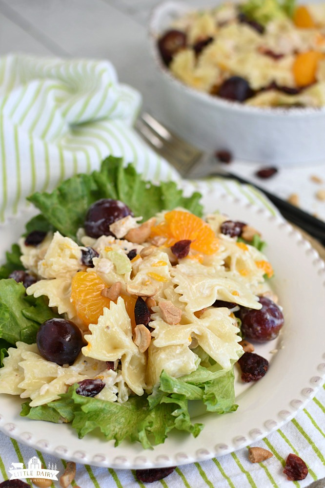 a white plate with green leaf lettuce on the bottom, topped with pasta, red grapes, mandarin oranges, and dried cranberries