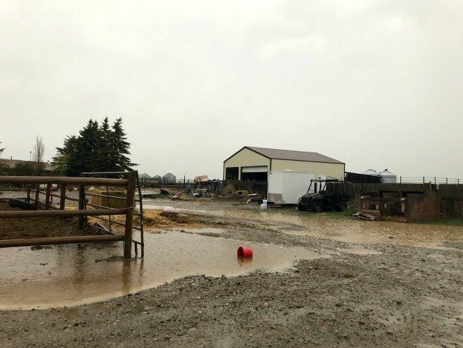 a fence, a shop, and a mud puddle