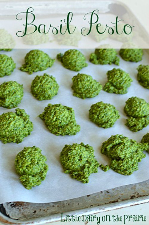 Cookie Scoops of basil pesto on a parchment lined cookie sheet