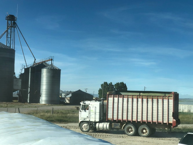 Trucks for bagging feed