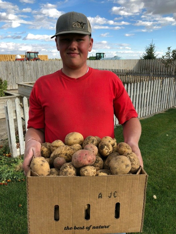 Carson and a box of potatoes