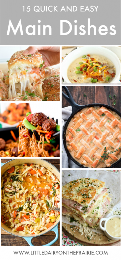 Collage of miain dish images