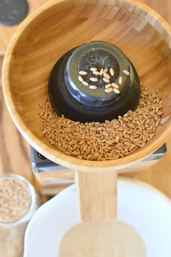 Wheat in a grinder