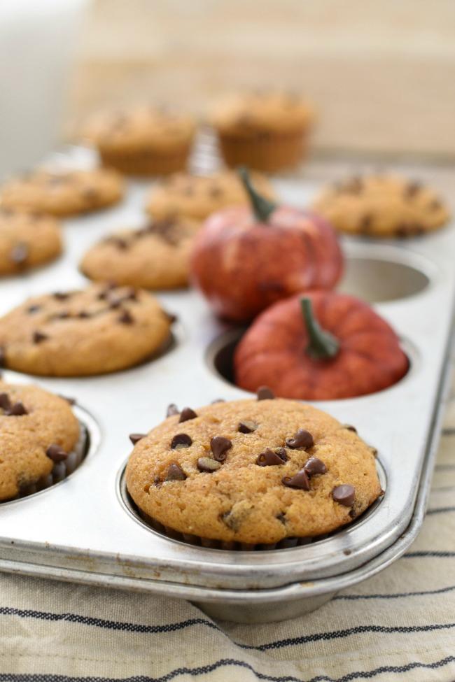 Baked Pumpkin Zucchini Chocolate Chip Muffins in a muffin tin